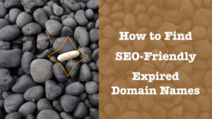 find seo friendly expired domain names